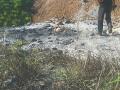 章丘东矾硫村村边被偷倒工业废料 周边大片杂草枯死 (1)